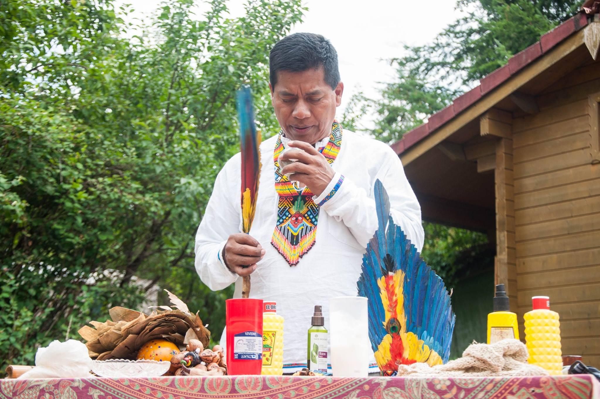 Ayahuasca: la liana degli spiriti